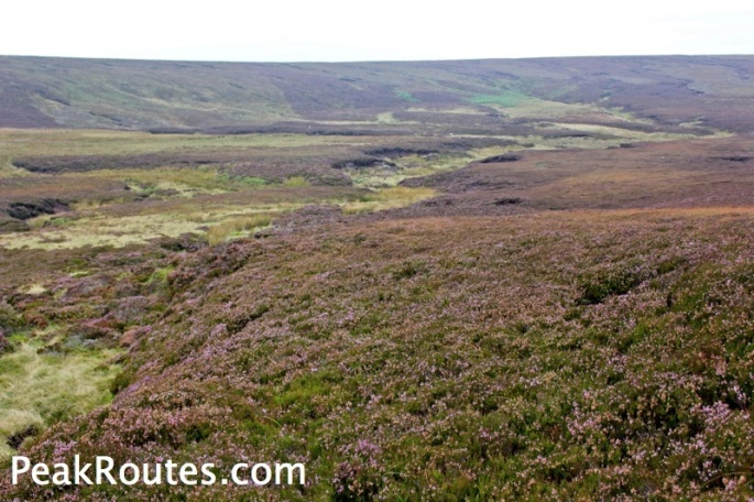 Swaines Greave Heather
