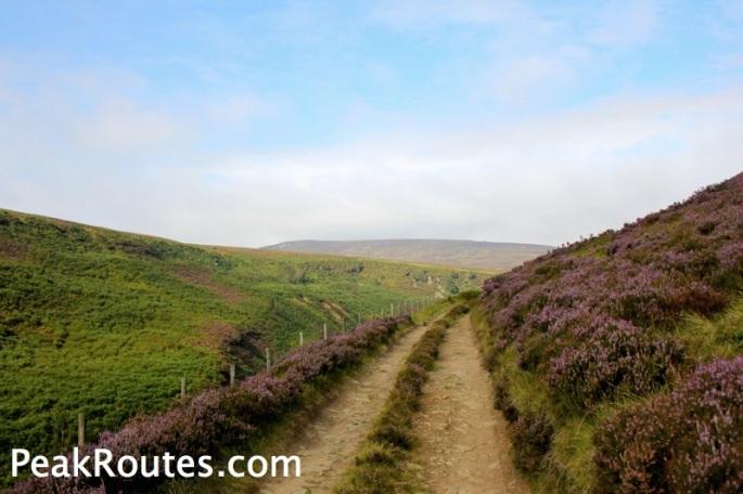 Upper Derwent Valley - Lands Side