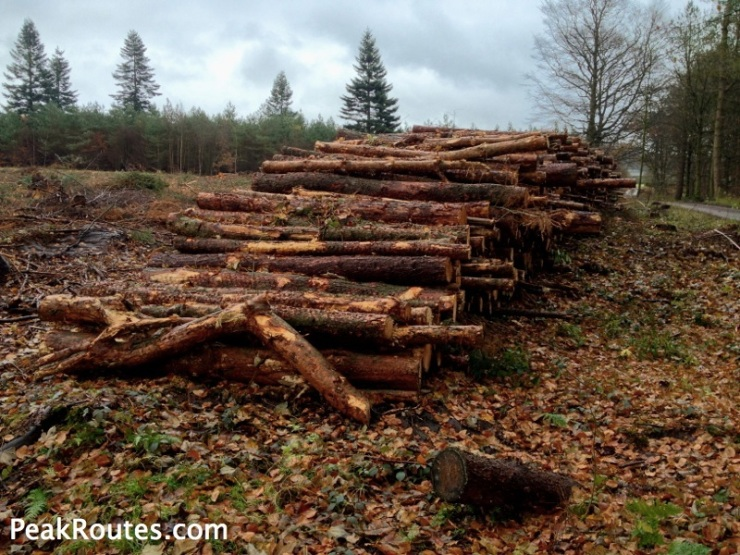 Logging at Chatsworth