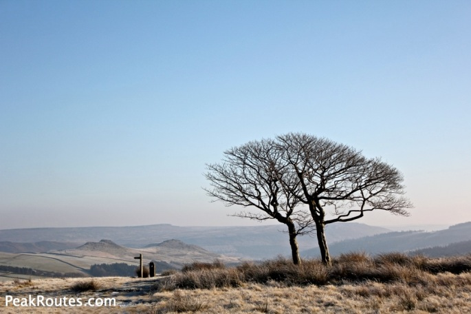 Crookstone Moor