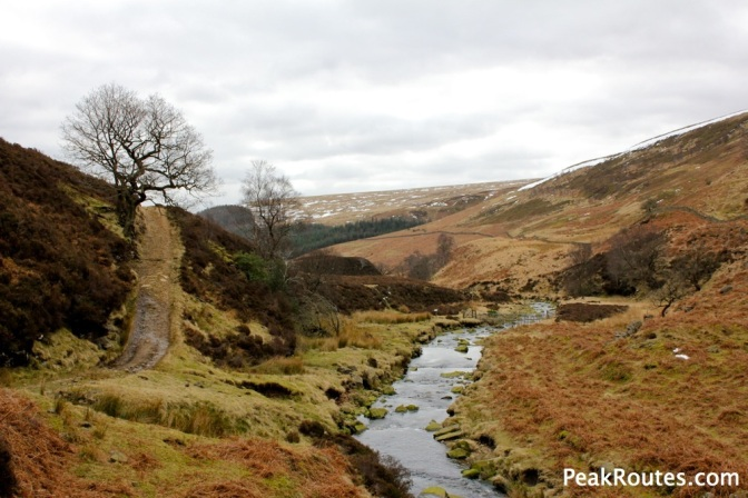River Derwent - Cranberry Bed