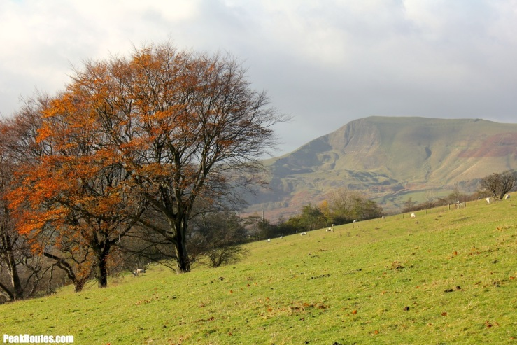 Mam Tor through the trees