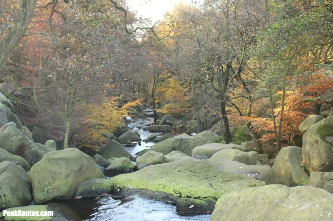 peak_district_padley_gorge_higger_tor_nov13_IMG_9939