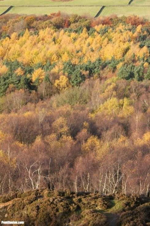 Autumn Colours from Millstone Edge