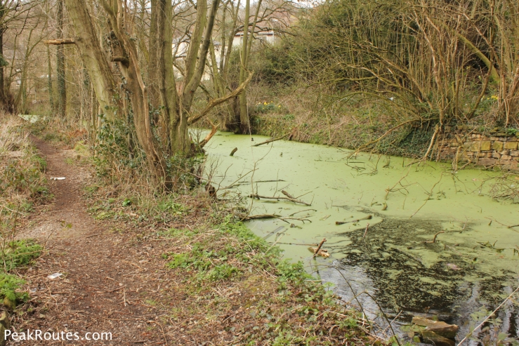 The Pea Soup, A small section of the canal that still remains in Bullbridge