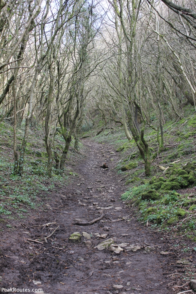 Climbing out of the Manifold Valley towards Wetton