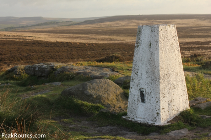 Trig Point on White Edge with a Herd of Deer behind